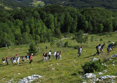 Ekskurzija Gimnazije in zdravstvene šole na planoto Gora